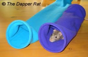 Как сделать игрушку для крыс 815